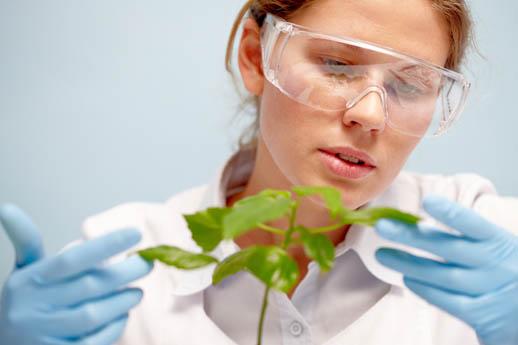 Biologo o farmacista: chi è più qualificato per fare il nutrizionista?